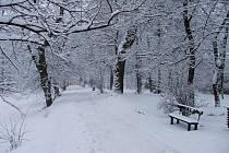 Už jen sníh brání tomu, aby se Tyršovy sady začaly měňit do nové podoby.