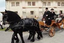 Kunovicemi se budou prohánět kočáry, bryčky i sedlácké vozy.