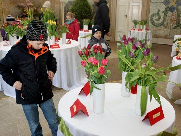 Tulipomanie v buchlovickém zámku přilákala za vznešenými  květinami jara stovky lidí.