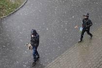Sněhová húlava se o velikonočním pondělku strhla také v Dolním Němčí.