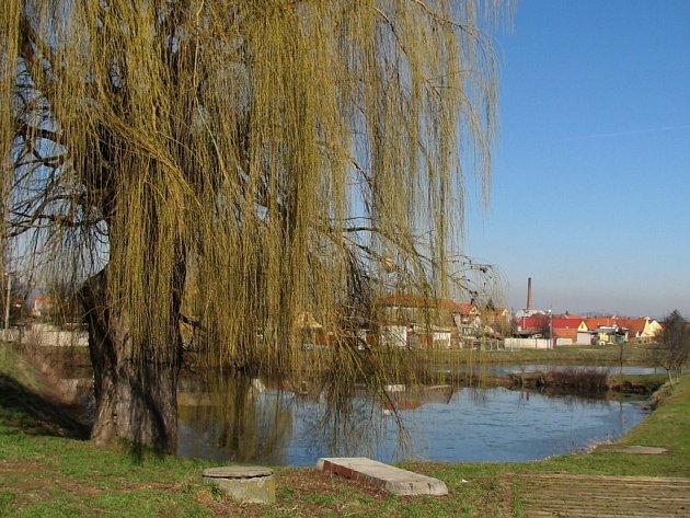 Ze dvou nedakonických rybníků se stane jedinný.