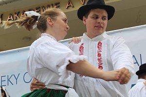 Mikroregiony na Slováckých slavnostech vína