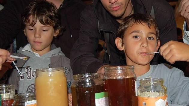 Košt medu v archeoskanzenu v Modré