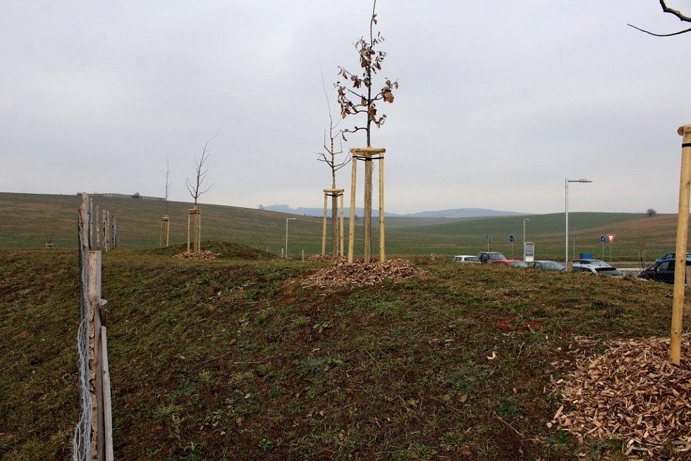 VTupesích vybudovali za vsí nový mokřad a tůně, které obnoví funkce vkrajině.