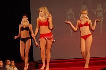 Kolekci pro podzim a zimu 2011 předvádělo 18 modelek a modelů.