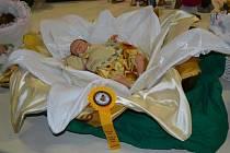 Rebornované miminko Kit Freya bylo poctěno Zlatou stuhou a cenou poroty.