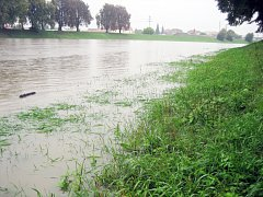 Rozvodněná řeka Morava. Ilustrační foto.