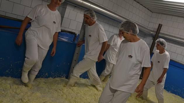 V Hamé začala sezona výroby kysaného zelí, potrvá zhruba do března či dubna.