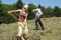 Mladí lidé na kopanicích pracovali po dva týdny.