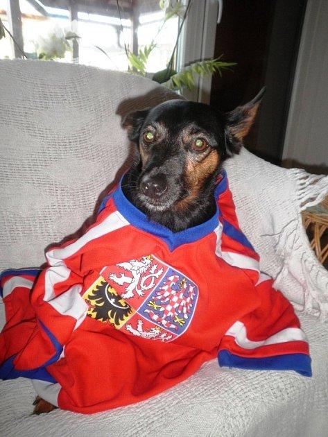 MAX.  Pravý fanoušek hokeje