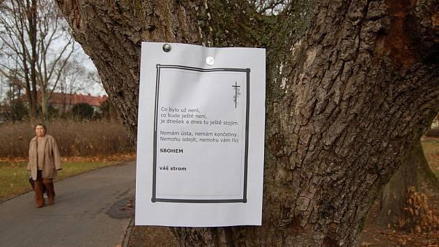 Smuteční parte se ve středu 14. prosince večer objevila ve Smetanových sadech v Uherském Hradišti na několika stromech, které jsou určeny k pokácení. Oproti původním předpokladům ve čtvrtek ještě samotné práce nezačaly.