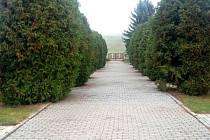 Hřbitov v Nivnici. Ilustrační foto.