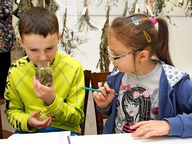 O druhém prázdninovém dnu si mohl rodiče s dětmi vyrobit originální bylinné mýdlo a prohlédnout výstavu Léčivé rostliny a jejich dvojníci.