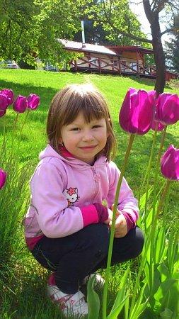 NATÁLKA. Jako zreklamy na tulipány.