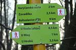 Lyžařská běžecká trasa přes Chřby - směrovník.