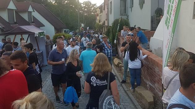 Putování Vinohradskou ulicí při Slavnostech vína. Ilustrační foto