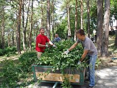 Dvě desítky dobrovolníků uklidily část hájku v Dolním Němčí, zarosteného náletovými křovinami.