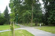Kvůli rekonstrukci parku přišel odpočinkový prostor o desítky stromů, město je ale z větší části nechalo nahradit novou zelení.
