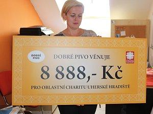 Den charity v Uherském Hradišti