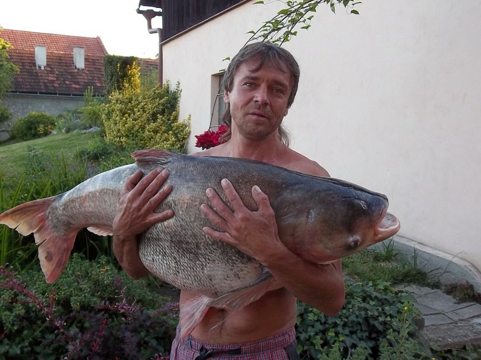 Soutěžní číslo 37 – Petr Mareček, tolstolobik, 100 cm, 30 kg.