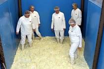 Tradiční zpracování zelí  ve firmě Hamé v Kunovicích.