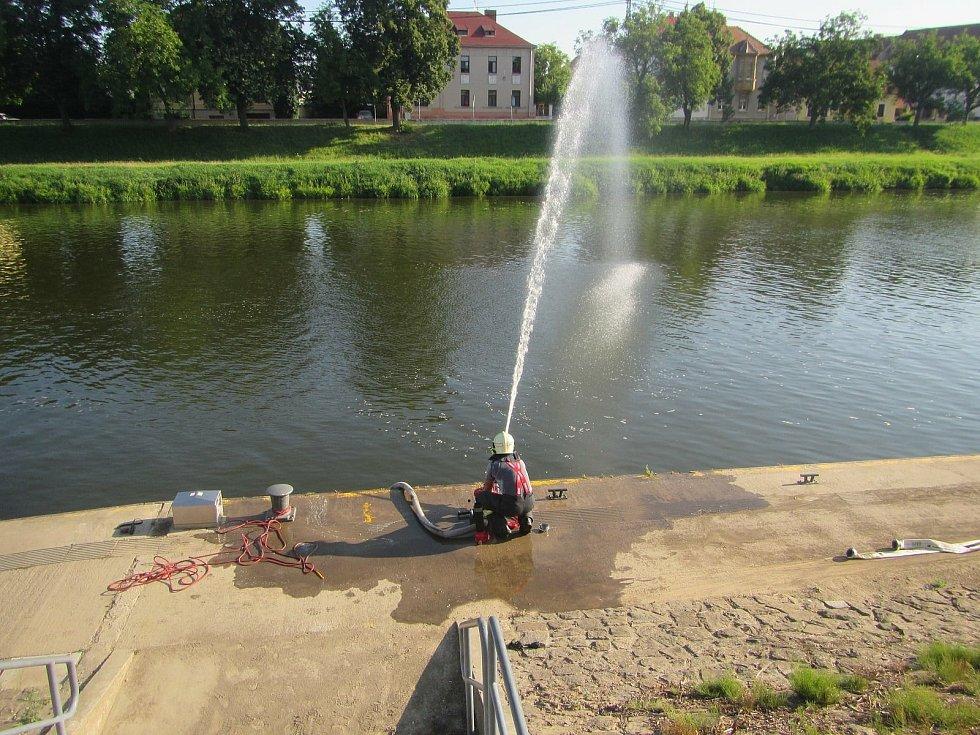 Úhyn ryb v řece Moravě v Uherském Hradišti