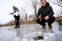 Rybolov na ledu na rybníku Halda v Boršicích.