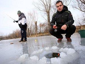 Rybolov na ledu na rybníku Halda v Boršicích