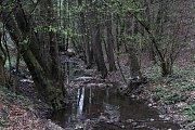 Odemykání lesa na Salaši