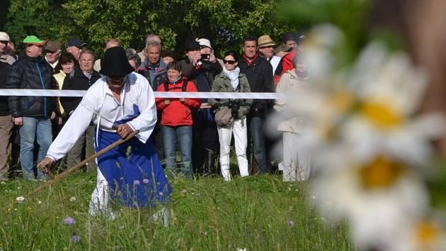 Kosení louky v zámecké zahradě za ranního kuropění? V Buchlovicích se konalo již poosmnácté.