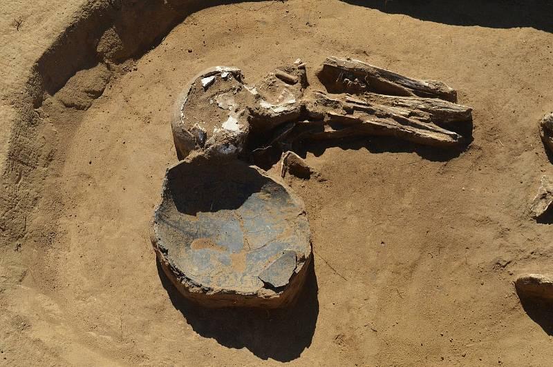 Archeologové mají žně Na Nivách vPolešovicích. Letos při nich našli polešovskou Venuši.