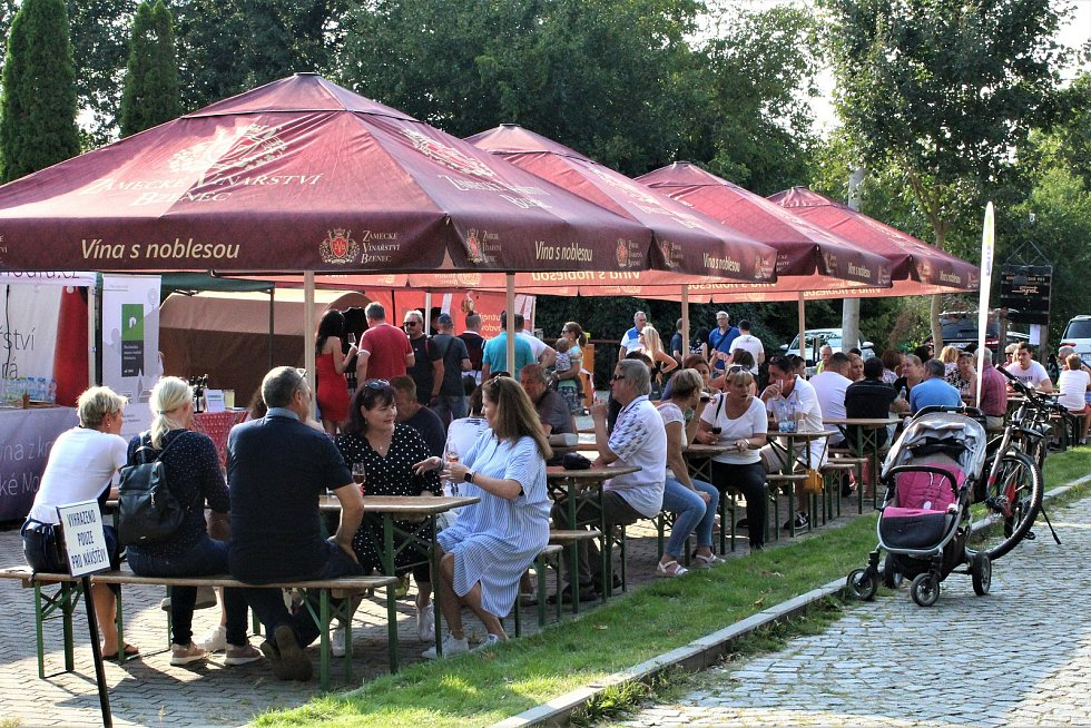V sobotu se Vinohradská ulice v Uherském Hradišti zaplnila milovníky vína i folkloru. Konaly se tam totiž (ne) Slavnosti vína.