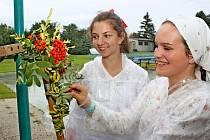 ATRIBUT DOŽATÉ. Díky jalubskému folklornímu souboru Střešňa a místní organizaci KDU – ČSL jsou v obci už 22 let udržovány tradiční dožínky.