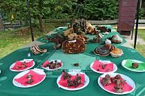 HOUBOVÁ EXPOZICE. Na 13. výstavě hub na Salaši byly kvidění velmi chutné exempláře, ale i houby, které se dají jíst jen jednou.