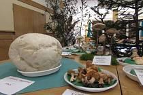 Výstava hub v Nivnici.