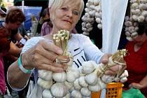 Festival česneku. Ilustrační foto