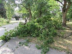 Následky bouřky z noci na pátek 11. 8. 2017 ve Smetanových sadech