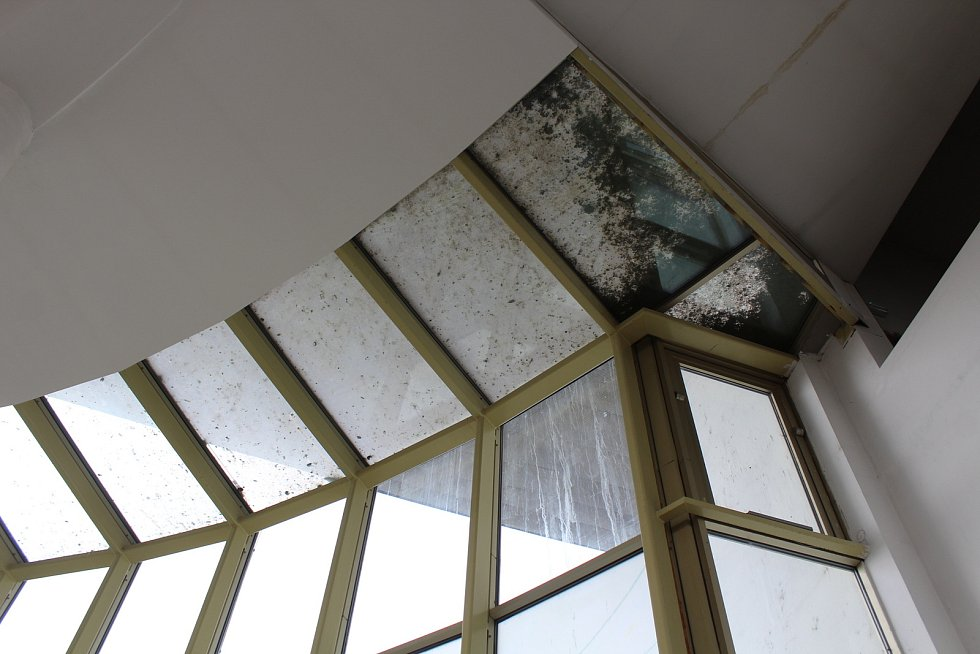 Okna od holubího trusu ve staroměstském kostele Svatého Ducha.