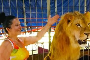 Lev Princ a jeho cvičitelka Stanislava Šimková, majitelka cirkusu Metropol.