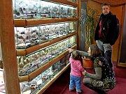 Jedno z největších terárií na Moravě otevřeli v Modré. Exotičtí živočichové potěší děti i dospělé.