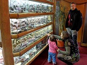 V Modré otevřeli jedno z největších terárií na Moravě