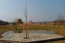 Před Velehradem přibyla nová jabloňová alej a dva mokřady.