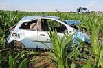 Řidič skončil s Fiatem v kukuřičném poli.