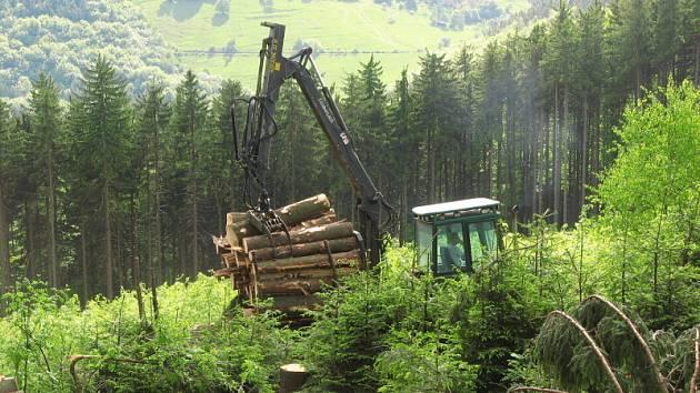 Těžba v Karpatech.