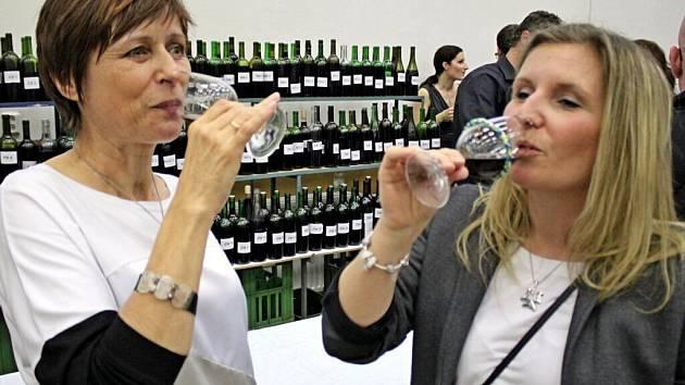 Na výstavě vín v Uherském Hradišti-Sadech bylo v sobotu k ochutnání 506 vzorků vína