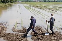 Zemědělci začínají sčítat škody. Ilustrační foto.
