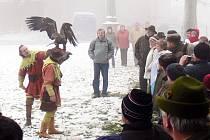 Ukázku výcviku dravých ptáků předvedli sokolníci z Ostravy.