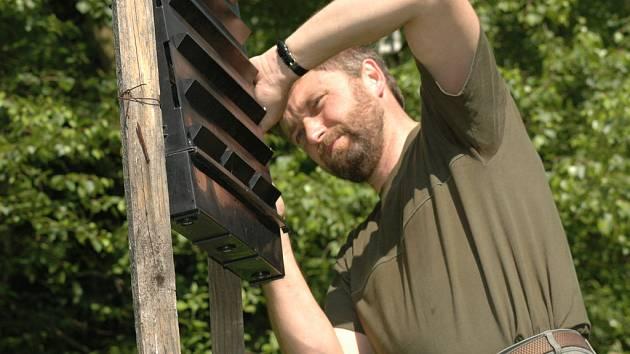 Lesníci každý den kontrolují feromonové lapače, a tak sledují počty kůrovce v jednotlivých porostech.