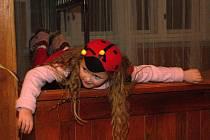 V Boršicích se konal silvestrovský maškarní ples.