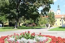 Park před Obchodní akademií v centru Uherského Hradiště čekají úpravy.